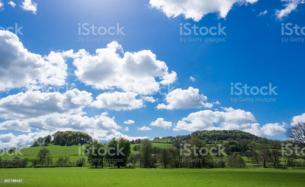 Pictor, from the Wye valley. stock photo