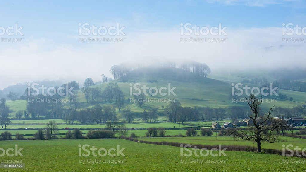 Pictor in the fog stock photo