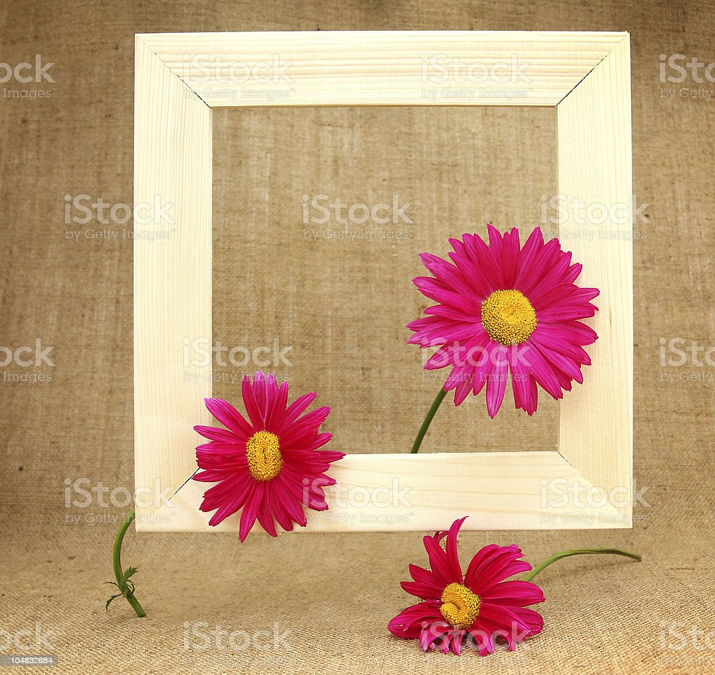 Picture frame decorated with flowers royalty-free stock photo