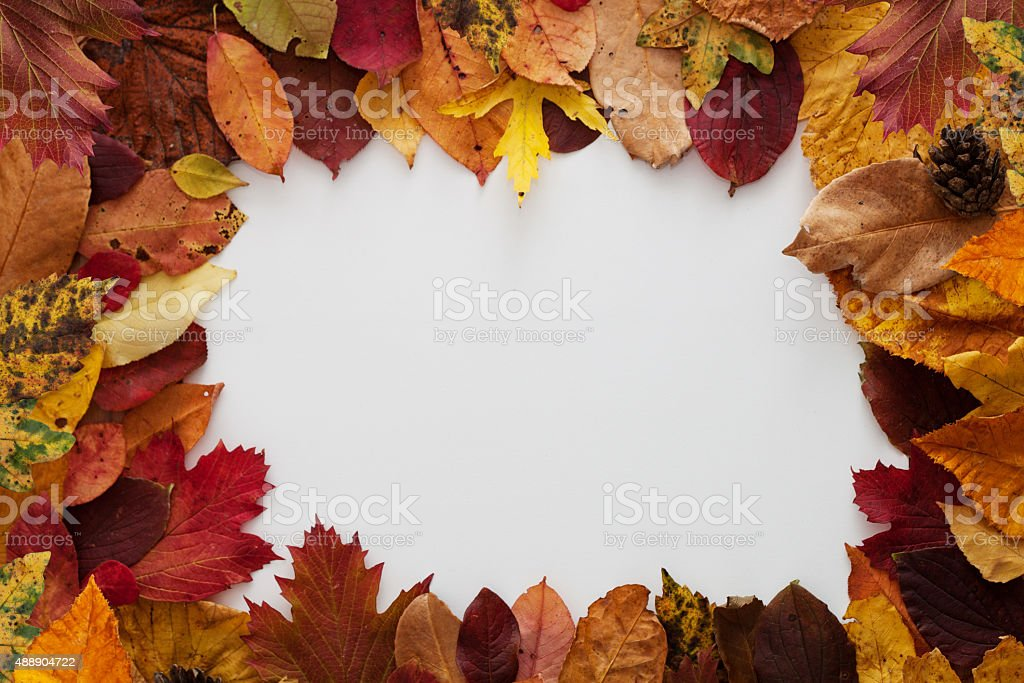 picture frame in autumn style stock photo