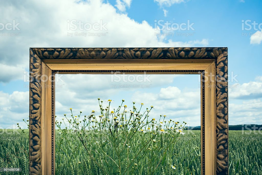 Picture Frames in nature III stock photo