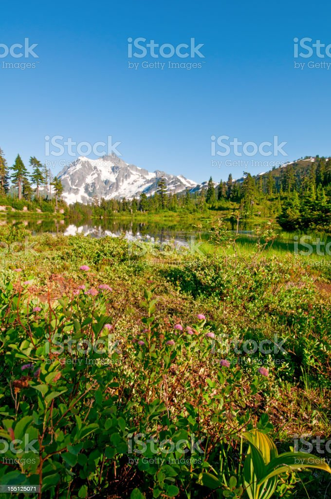 Picture Lake and Mt. Shuksan - II royalty-free stock photo