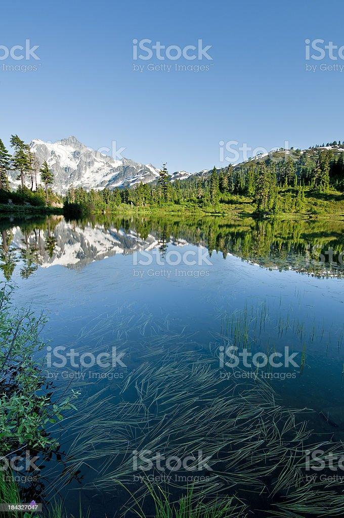 Picture Lake and Mt. Shuksan - XI royalty-free stock photo