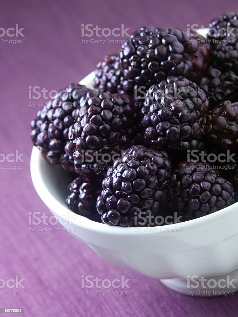 A picture of a bowl of blackberries royalty-free stock photo