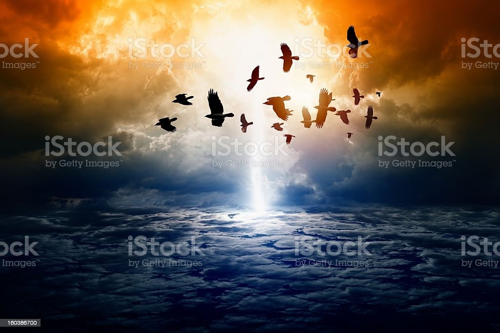 Picture of a dramatic nature background with birds flying stock photo