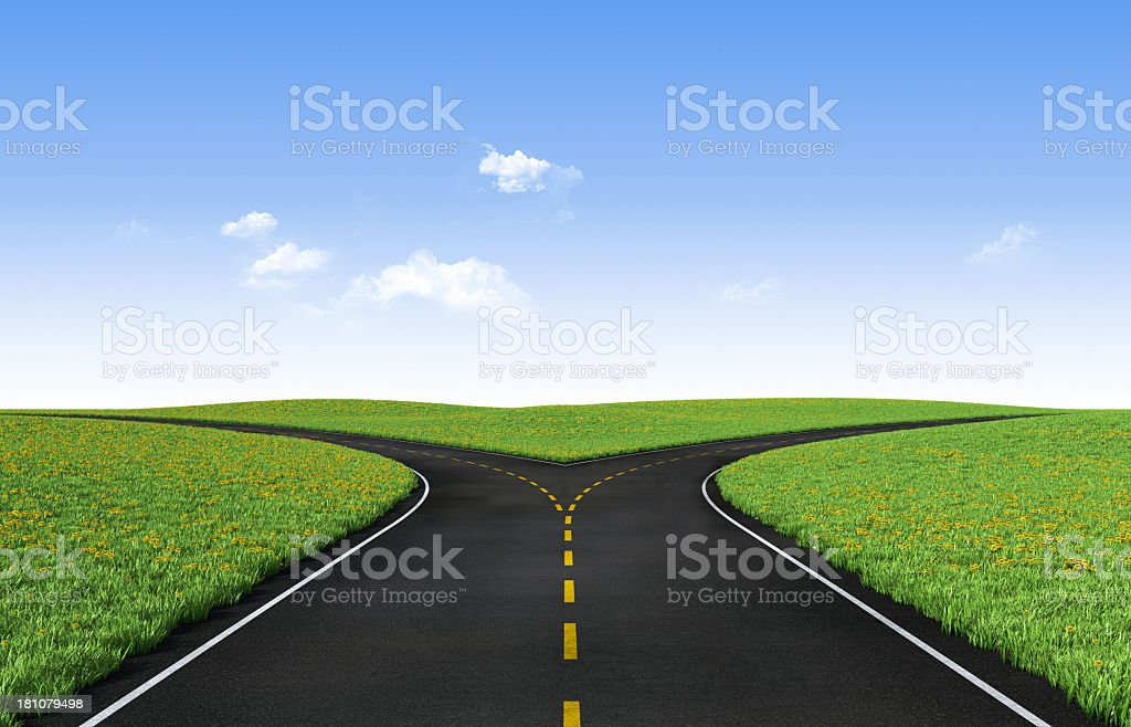 Picture of a fork in the road surrounded by green grass stock photo