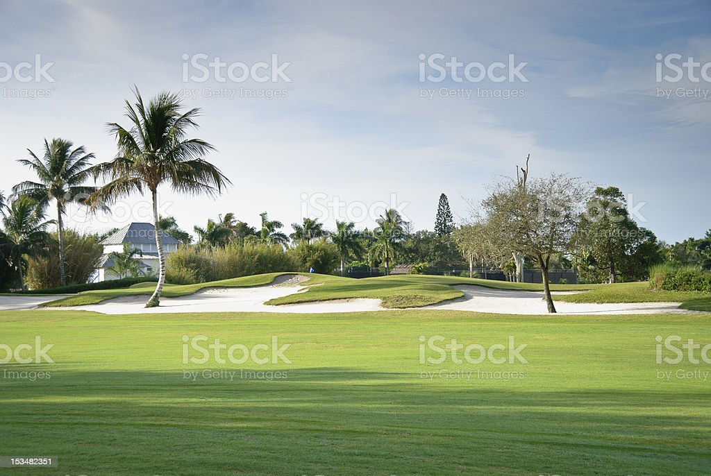 A picture of a golf course with trees surrounding stock photo
