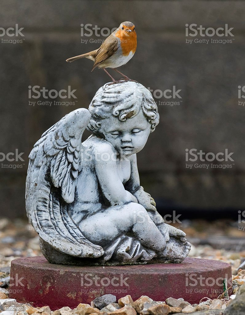 picture of a robin on garden shrine stock photo