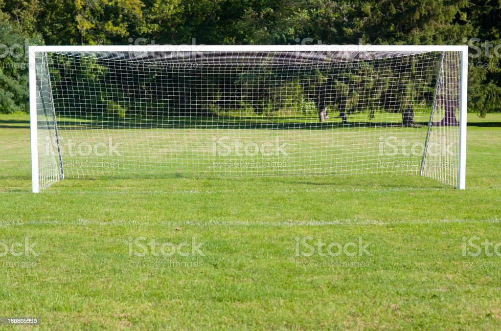Picture of a soccer goal on a green soccer field stock photo