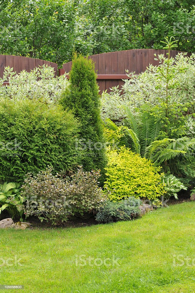 Picture of a well maintained garden stock photo