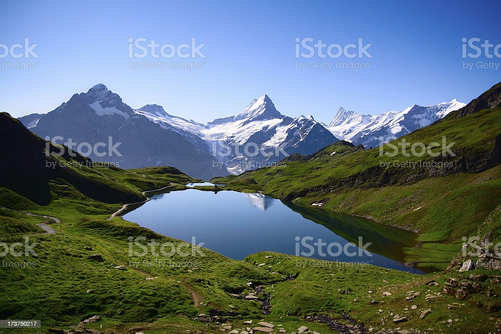 Picture of Bernese Overland on a blue-sky day royalty-free stock photo