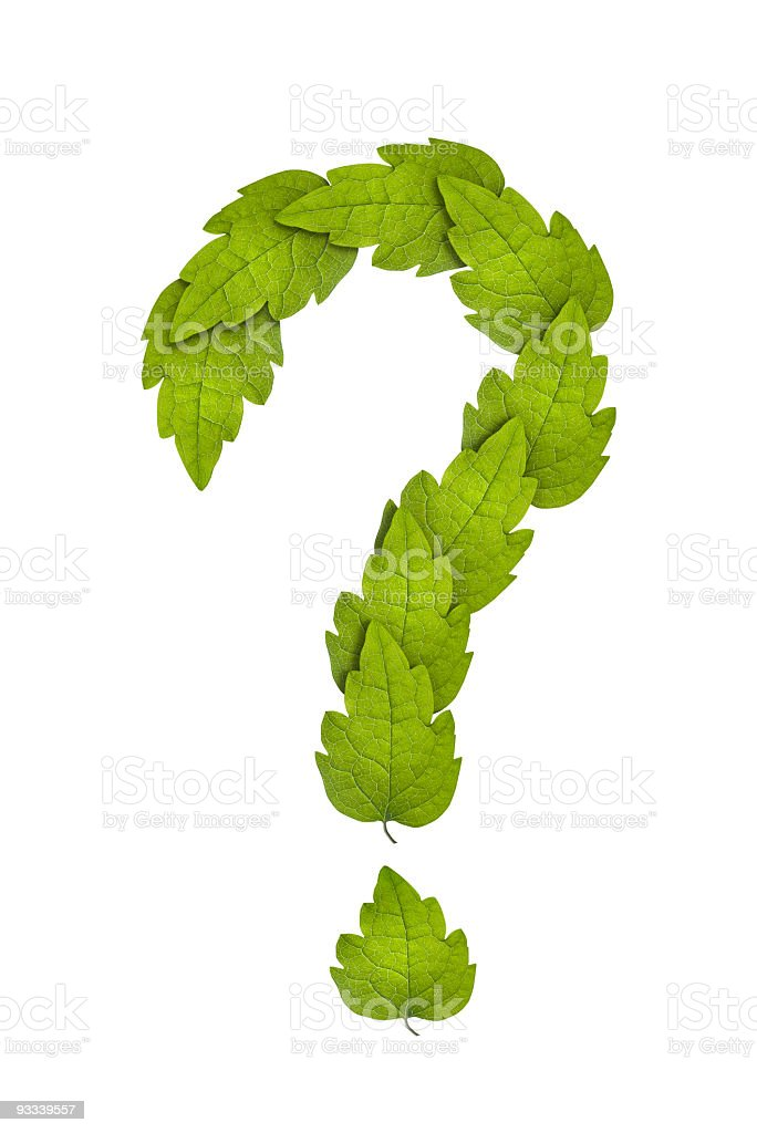 A picture of green leaves forming a question mark stock photo