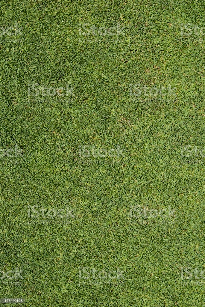 A picture of green seamless grass stock photo