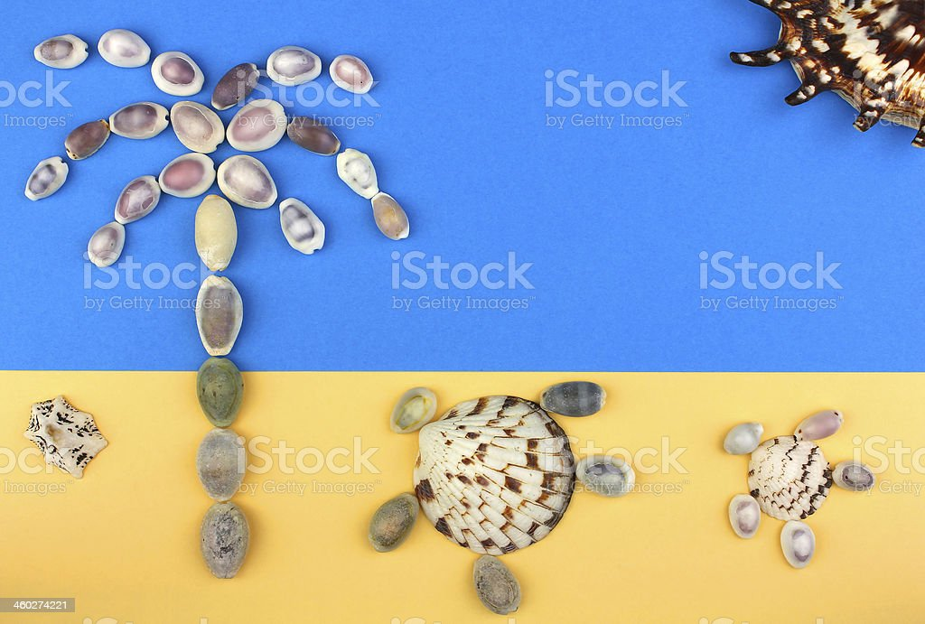 picture of seashells, tropical beach, palm tree, turtles, sun royalty-free stock photo