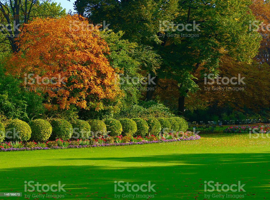 A picture of some gardens and shrubbery in the autumn royalty-free stock photo