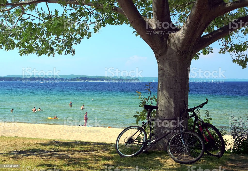 A picture of two bikes on a tree at a beach stock photo