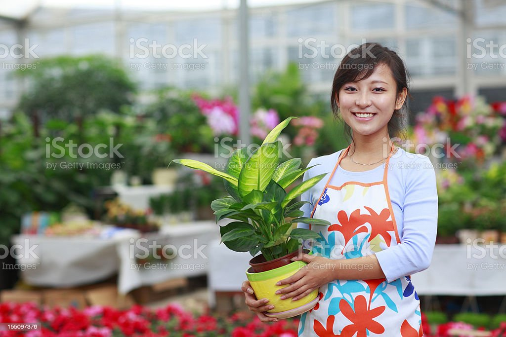 picture of young asian florist in the shop royalty-free stock photo