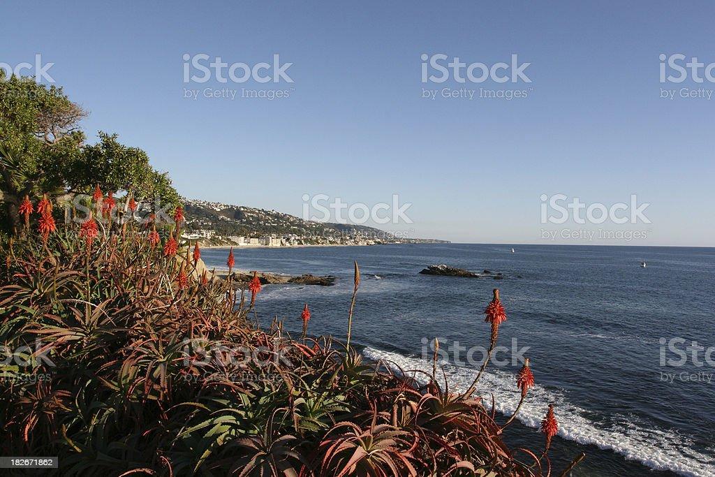 Picture perfect Laguna Beach coast royalty-free stock photo