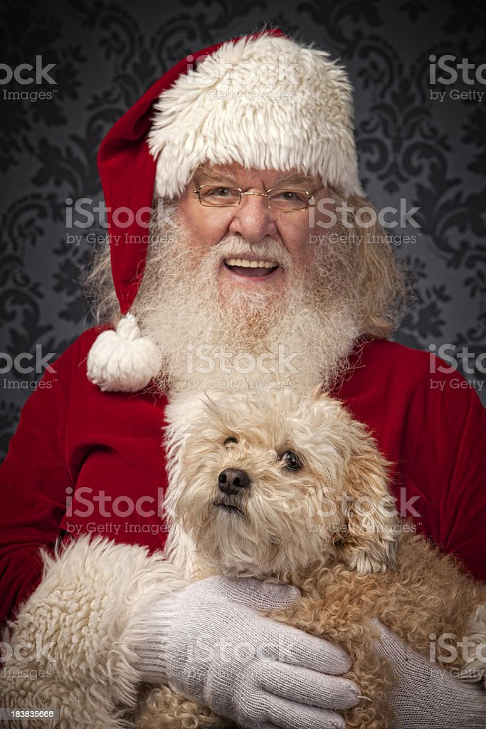 Pictures of Real Santa Claus with his pet dog stock photo