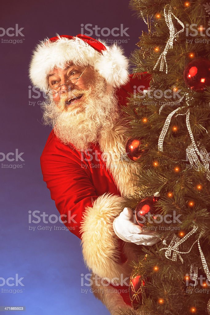 Pictures of Vintage Real Santa Claus hiding behind Christmas Tre royalty-free stock photo