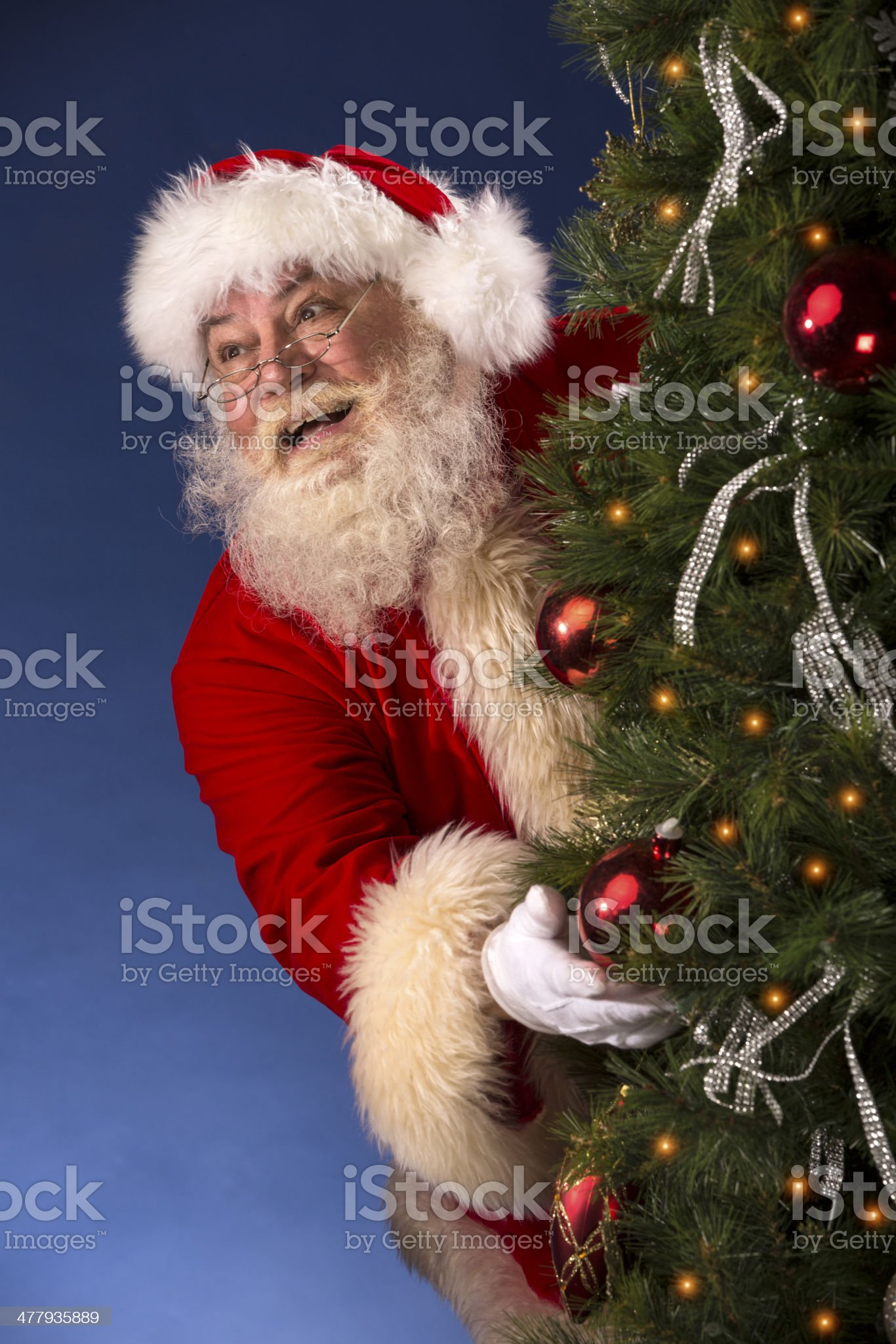 Pictures of Vintage Real Santa Claus hiding behind Tree royalty-free stock photo