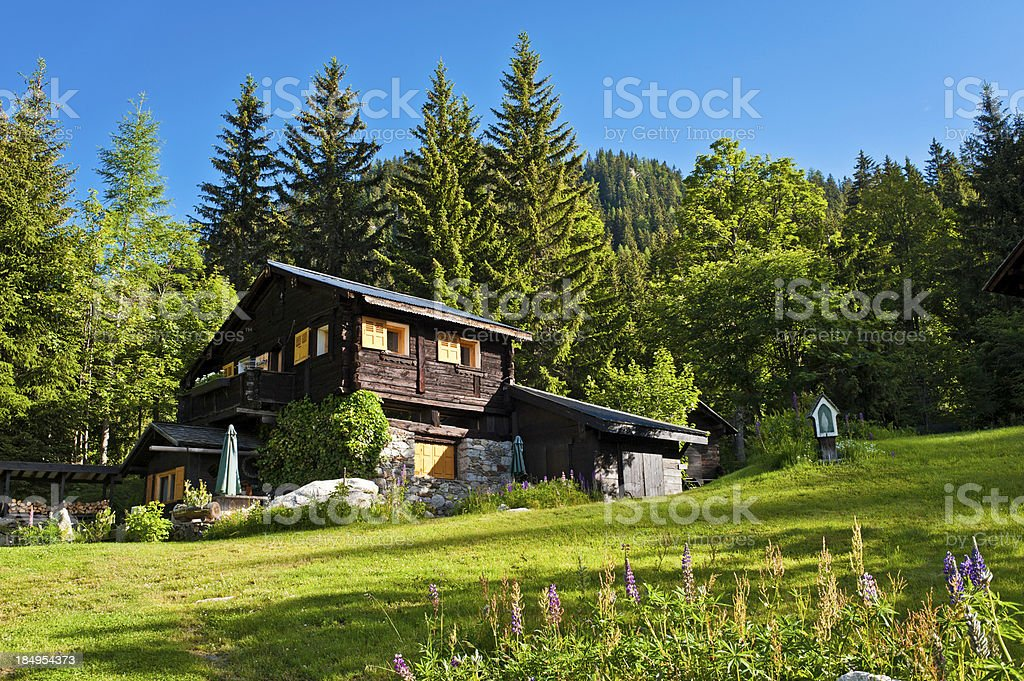 Picturesque Alpine chalet green summer mountain forest stock photo