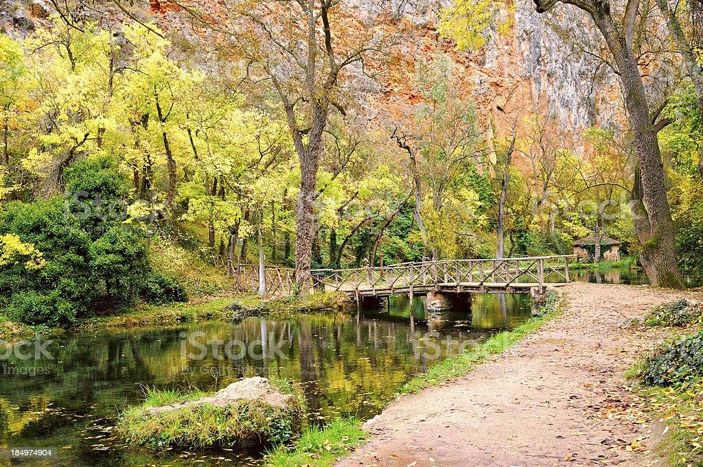 Picturesque footbridge in beautiful autumn park stock photo