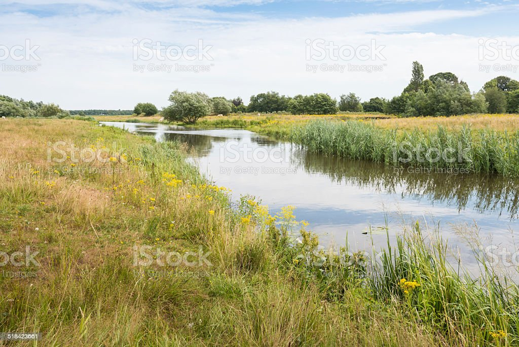 Picturesque landscape in summertime stock photo