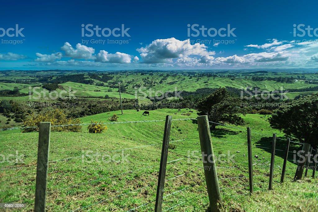Picturesque New Zealand Landscape stock photo