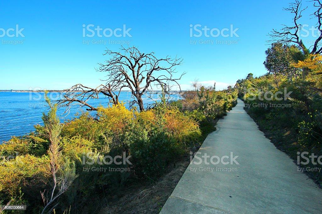 Picturesque path through Kings Park, Western Australia stock photo