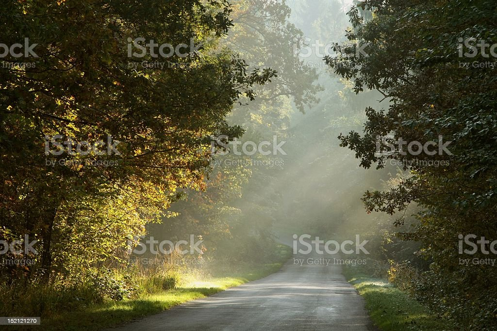 Picturesque rural road at dawn royalty-free stock photo