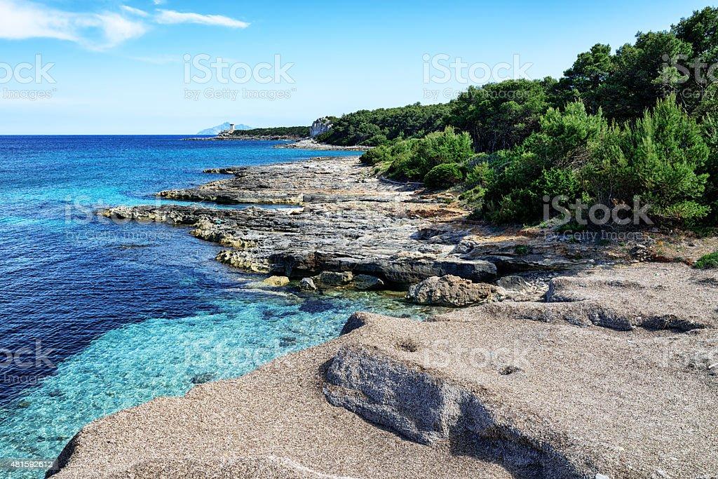 Picturesque seashore on  Pianosa Island,  Italy stock photo