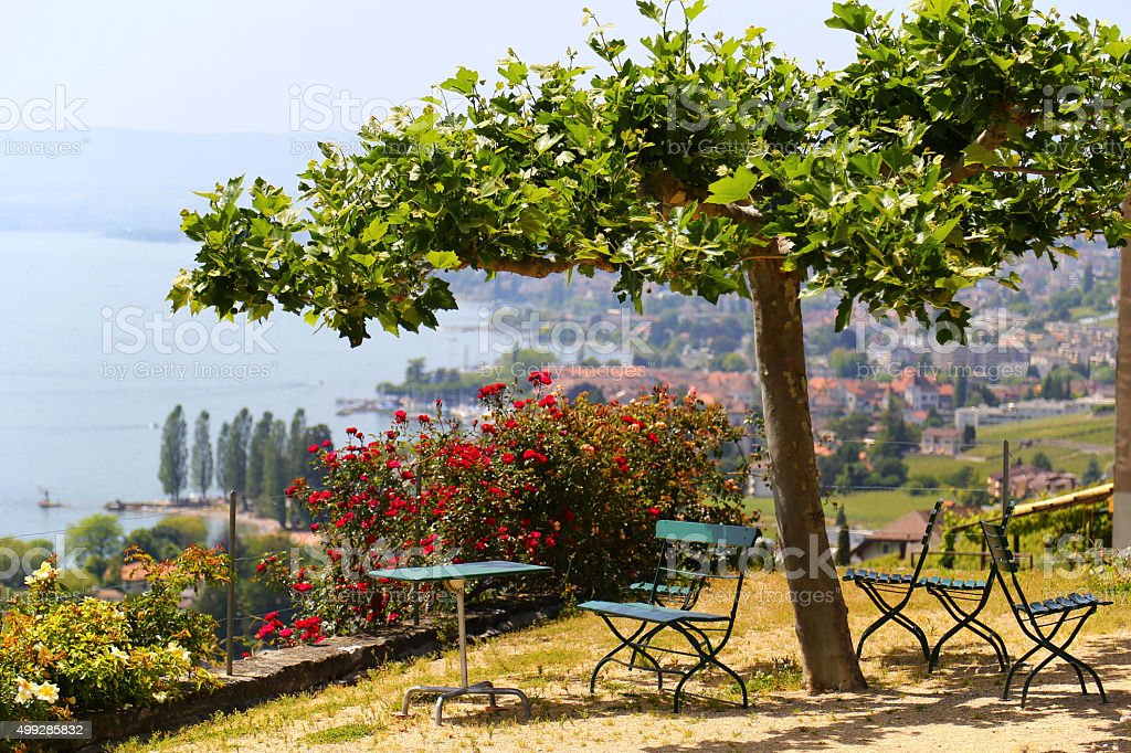 Picturesque terrace with view on vineyards near Lake Geneva, Switzerland stock photo