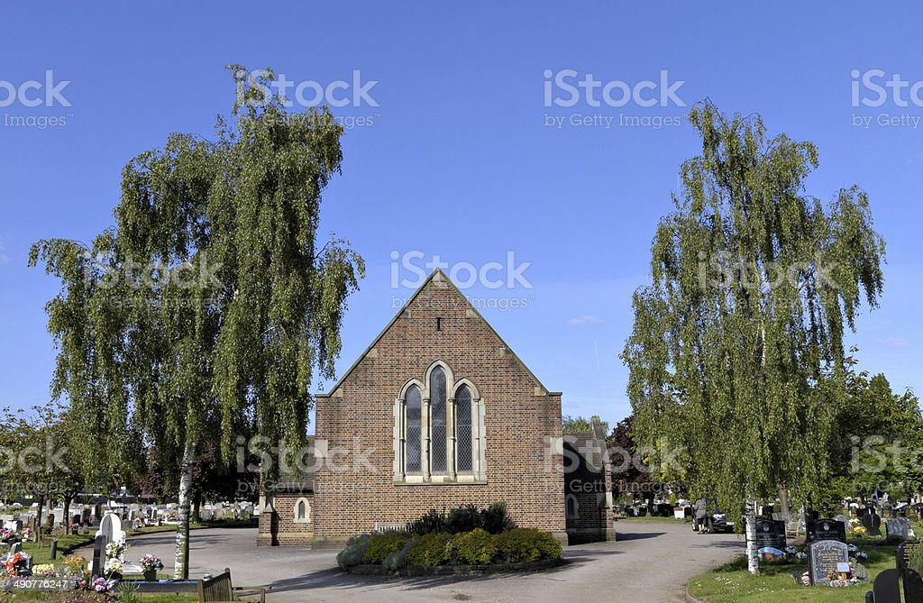 Cemetery sentinels weeping silver birch trees Betula pendula stock photo