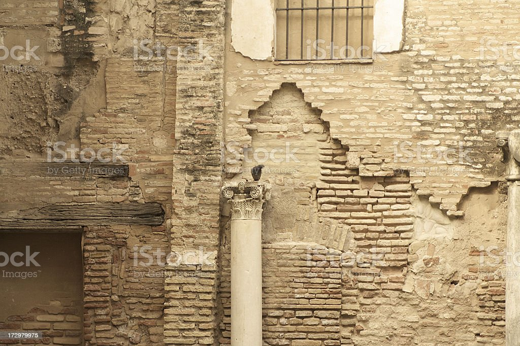 Pidgeon Perched on Column royalty-free stock photo
