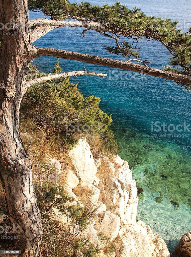 Piece of Adriatic stock photo