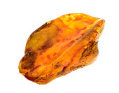 piece of baltic amber