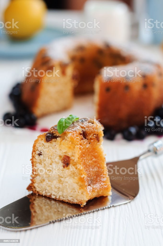 Piece of cake with raisins close-up stock photo