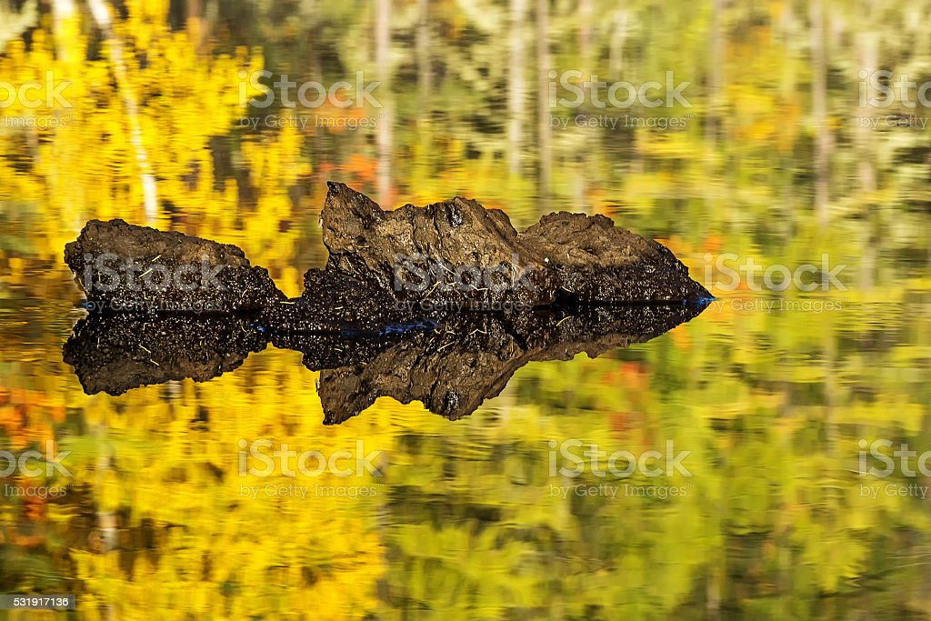 piece of lava in the river stock photo