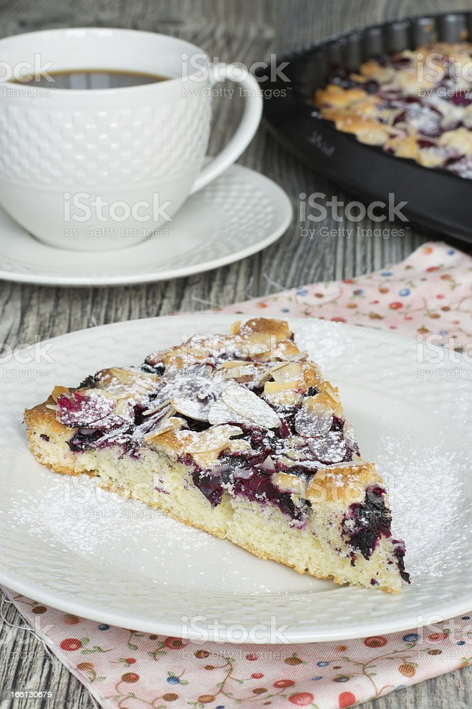 Piece of tasty berry pie royalty-free stock photo