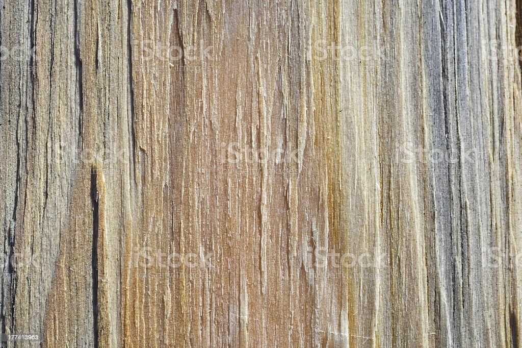piece of wood royalty-free stock photo