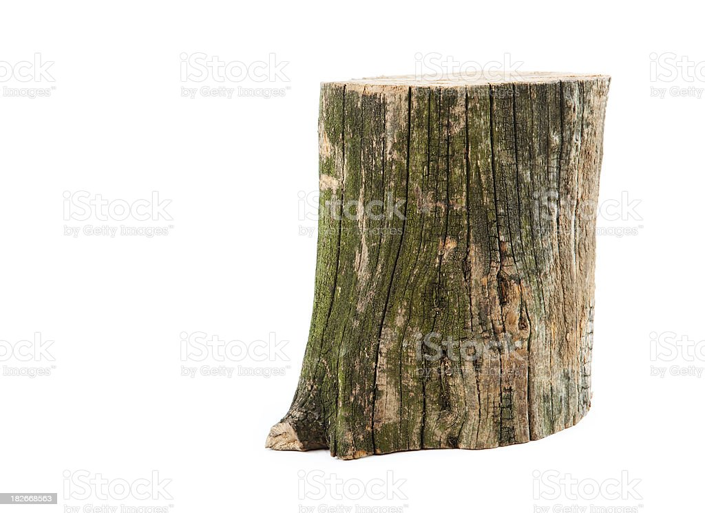 Piece of wood stock photo