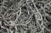 pieces of chains and wires of bicycle brakes