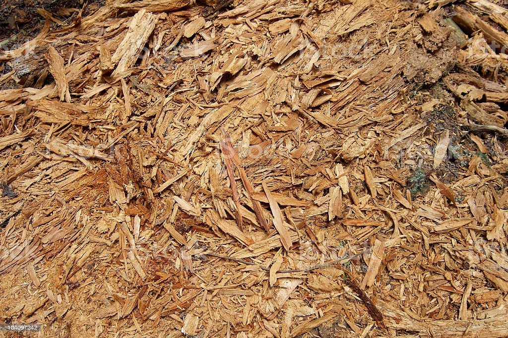 pieces of wood royalty-free stock photo