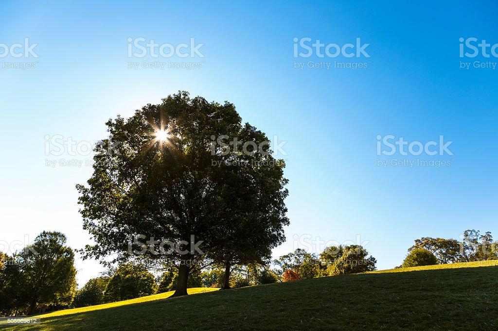 Piedmont Park, Georgia - USA stock photo