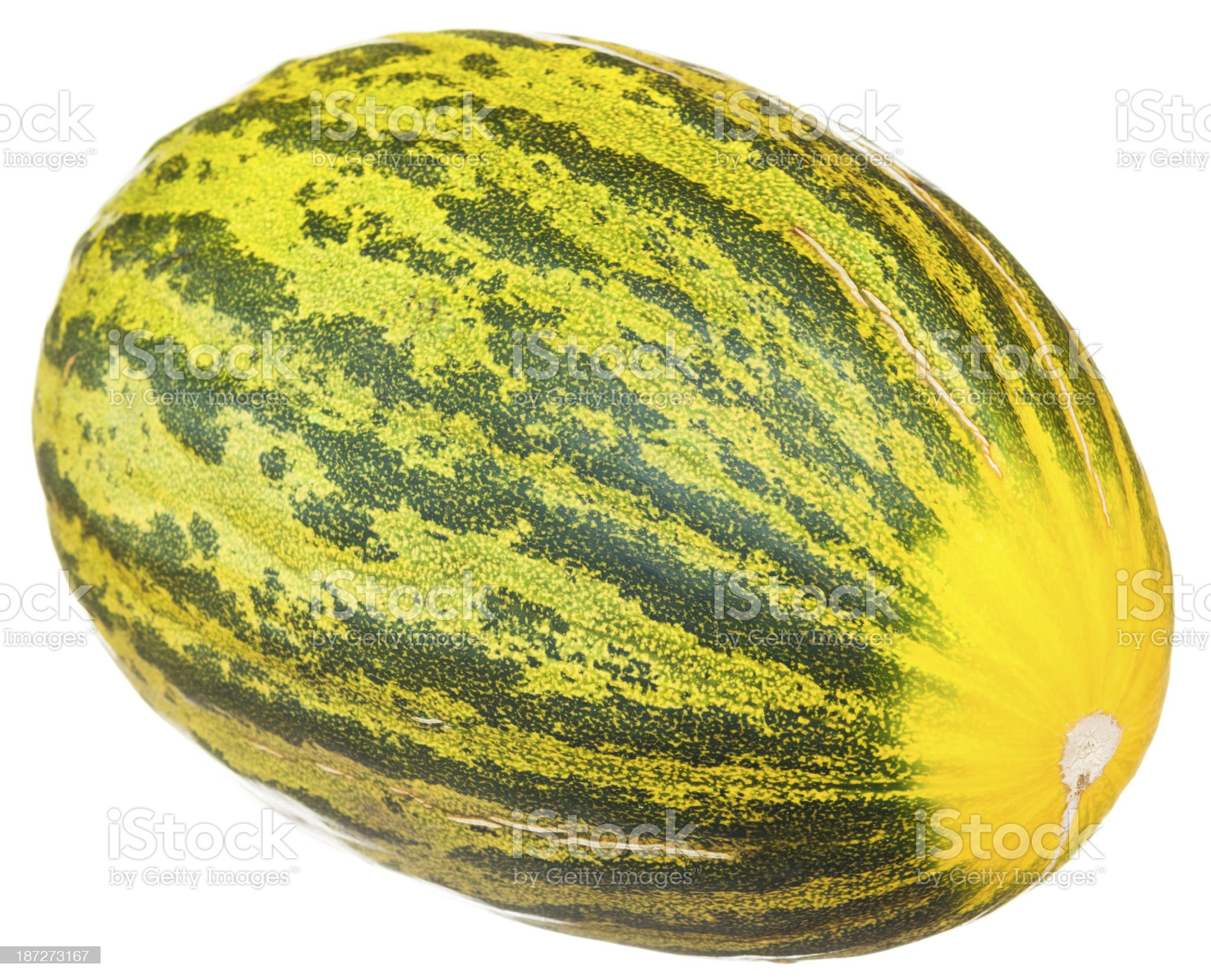 Piel de Sapo melon royalty-free stock photo