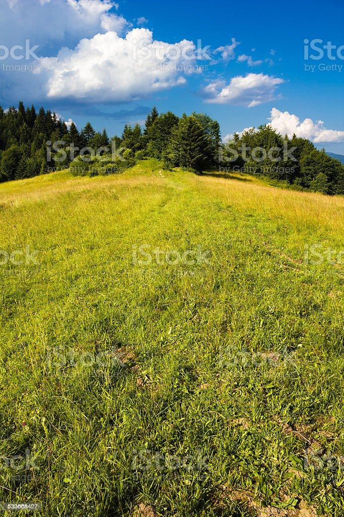 Pieniny Mountains in Summer stock photo
