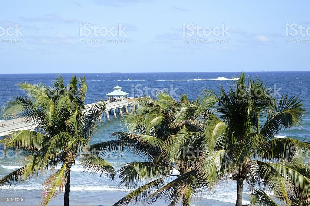 Pier et Palms photo libre de droits