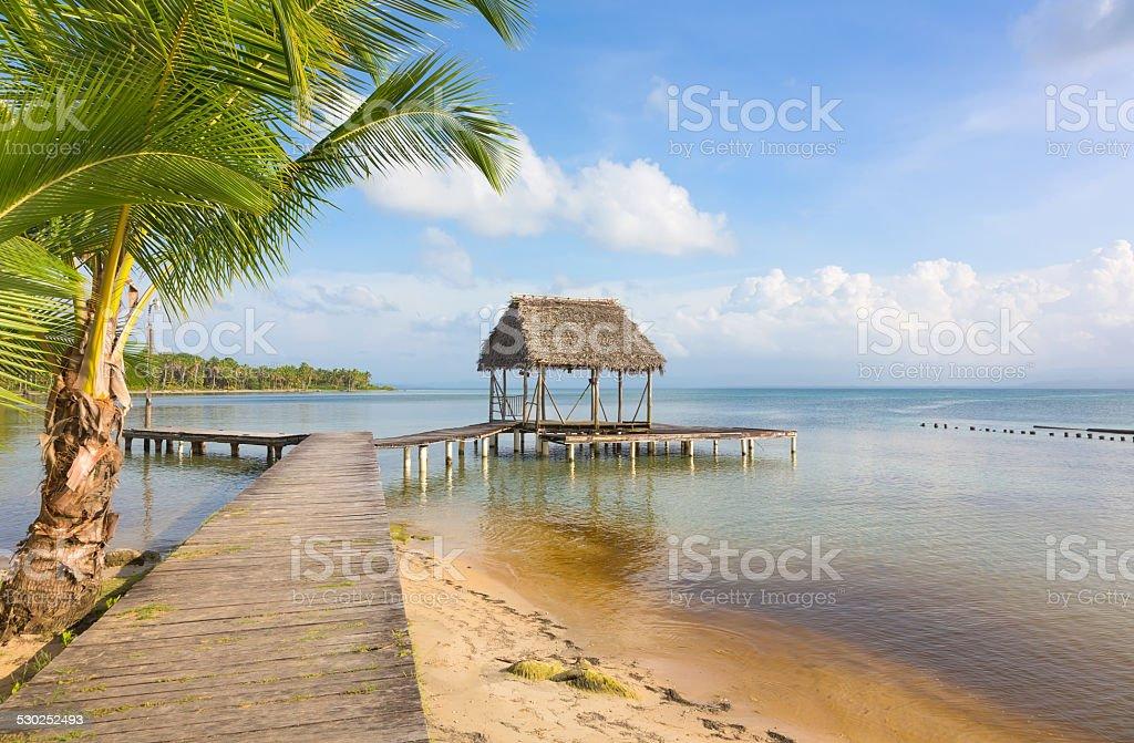 Pier on Boca del Drago beach, Panama stock photo