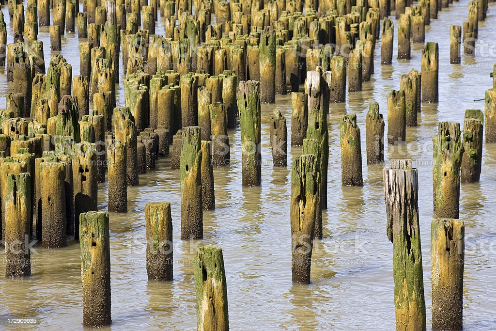 Pier Pylons royalty-free stock photo